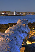 New England Lighthouses Prints - Portsmouth Harbor Light Print by Joann Vitali