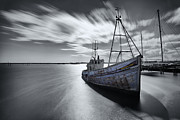 Prawn Boat Framed Prints - Portugal Fishing Boat Framed Print by Nigel Hamer