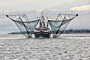 Shrimp Boat Prints - Posing for the Camera Print by Lynn Jordan