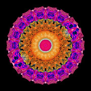 Lace Paintings - Positive Energy 1 - Mandala Art By Sharon Cummings by Sharon Cummings