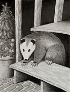 Jeanette K - Possum