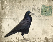 Poe Metal Prints - Post Card Nevermore Metal Print by Edward Fielding