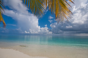 Best Seller Metal Prints - Postcard Perfection. Maldives Metal Print by Jenny Rainbow