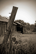 Old Fence Posts Photo Posters - Posted in Time Poster by Amber Kresge
