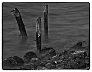 Craig Brown Art - Posts In The Water by Craig Brown