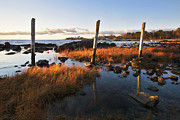 Seacoast Prints - Posts on the Coast Print by Eric Gendron
