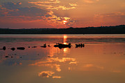Greeting Card Photos - Potomac River Sunrise III by Steven Ainsworth