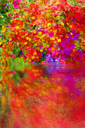 Buy Posters Online Digital Art - Potpourri Reflect by Robert Gipson