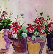 Red Geraniums Prints - Potted Geraniums Print by Suzanne Willis
