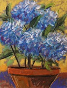 Potted Drawings Metal Prints - Potted Hydrangeas Metal Print by John  Williams