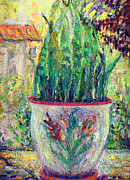 Potted Plant Paintings - Potted Plant by Benjamin Johnson