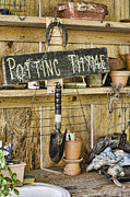 Potting Posters - Potting Thyme Poster by Heather Applegate