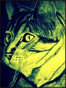 Rescue Mixed Media Posters - Pound Cat Tinted Poster by Irving Starr