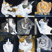 Pictured Paintings - Pound Cats by Karen  Bockus