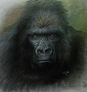 Zoo Pastels - Power by John F Willis