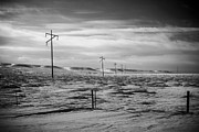 Bilings Prints - Power Line Horizon Print by Paul Bartoszek