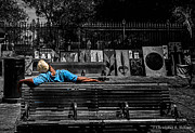 Christopher Holmes Photo Prints - Power Nap - 2 Print by Christopher Holmes