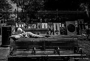 Christopher Holmes Metal Prints - Power Nap - BW Metal Print by Christopher Holmes