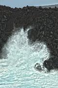 Patricia Hofmeester - Powerful wave