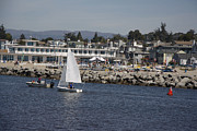 Santa Cruz Sailboat Art - pr 193 - The Sailboat by Chris Berry