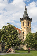 New Town Prints - Prague New Town Hall Print by Matthias Hauser