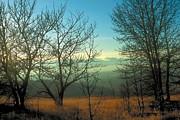Prairie Autumn 2 Print by Terry Reynoldson