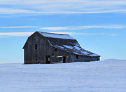Patricia  Paterson - Prairie Barn Winter