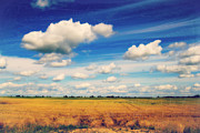 Prairie Skies Art Prints - Prairie Daydream Painted Photo Print by Alanna Dumonceaux