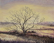 Gina Gahagan Metal Prints - Prairie During the Dry Season Metal Print by Gina Gahagan