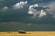Shed Photo Posters - Prairie Storm Poster by Dusty Demerson