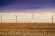Brandon Smith Framed Prints - Prairie Windmills  Framed Print by Brandon Smith