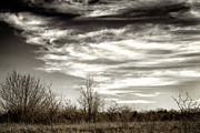 Texas Parks Posters - Prairie Winter Sky Poster by Joan Carroll