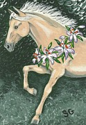 Sherry Goeben - Prancing Palomino With...
