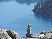Autumn Photographs Mixed Media Prints - Prayer Before the Jump - Crater Lake National Park Print by Photography Moments - Sandi