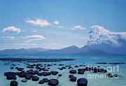 Precambrian Stromatolites Print by Chase Studio