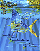 Black Marlin Framed Prints - Predator Off0067 Framed Print by Carey Chen