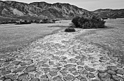 Jamie Pham - Prehistoric - Clark Dry Lake located in Anza Borrego Desert State Park in California.