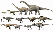 Comparison Art - Prehistoric Era Dinosaurs Of Niger by Nobumichi Tamura