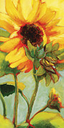 Sunflower Painting Metal Prints - Prelude to Glory Metal Print by Jen Norton