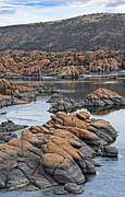 Prescott Prints - Prescott Arizona Winter Dells II Print by Lee Craig