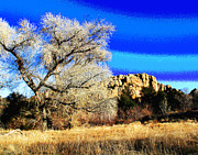Prescott Framed Prints - Prescott Image Framed Print by Larry Oskin
