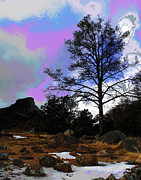 Prescott Photos - Prescott Sky by Larry Oskin