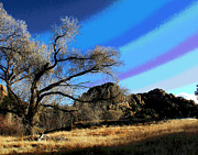Prescott Prints - Prescott Tree Print by Larry Oskin