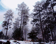 Prescott Photos - Prescott Trees by Larry Oskin