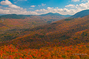 Presidential Range In Autumn Print by Brenda Jacobs