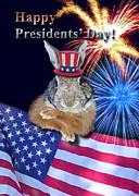 Jeanette K - Presidents Day Bunny Rabbit