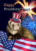 Ferret Digital Art - Presidents Day Ferret by Jeanette K