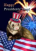 Jeanette K - Presidents Day Ferret