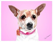 Animal Shelter Drawings - Pretty Boy a former shelter sweetie by Dave Anderson