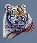 Mary Pastels Posters - Pretty Boy Siberian Tiger Poster by Mary Dove